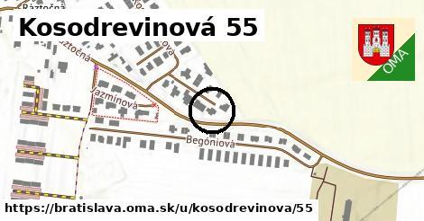 Kosodrevinová 55, Bratislava
