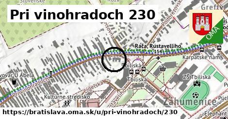 Pri vinohradoch 230, Bratislava