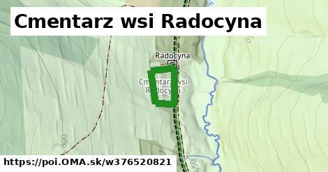 Cmentarz wsi Radocyna