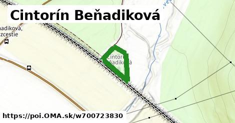 Cintorín Beňadiková