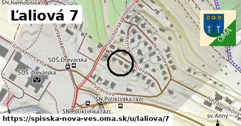 Ľaliová 7, Spišská Nová Ves