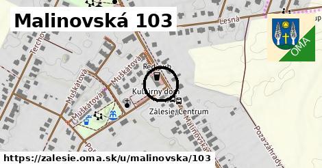 Malinovská 103, Zálesie