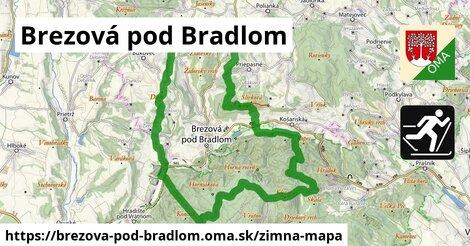 ikona Zimná mapa zimna-mapa  brezova-pod-bradlom