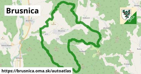 ikona Mapa autoatlas  brusnica