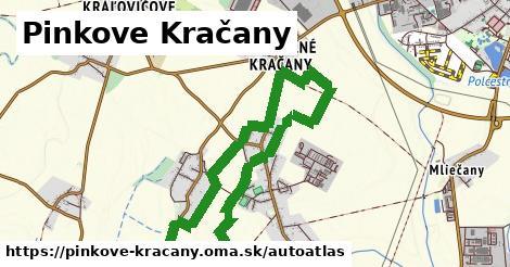 ikona Mapa autoatlas  pinkove-kracany