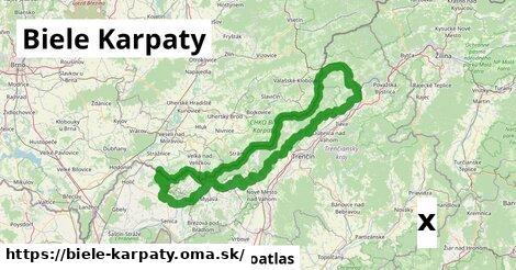 strom v Biele Karpaty