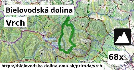 vrch v Bielovodská dolina
