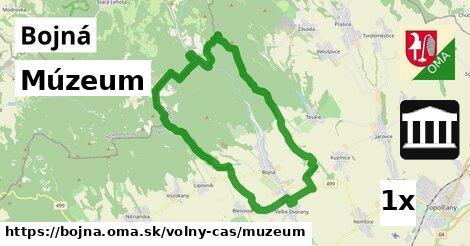 múzeum v Bojná