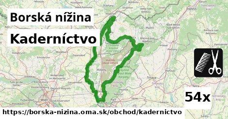 ilustračný obrázok k Kaderníctvo, Borská nížina