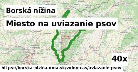 ilustračný obrázok k Miesto na uviazanie psov, Borská nížina