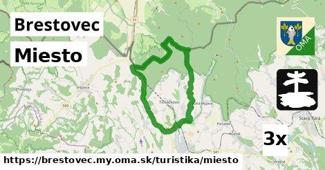 ilustračný obrázok k Miesto, Brestovec, okres MY