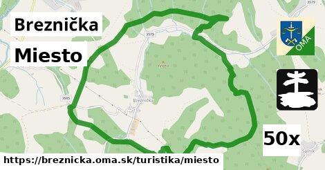 ilustračný obrázok k Miesto, Breznička