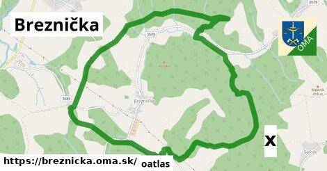 ilustračný obrázok k Strom, Breznička