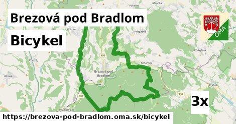bicykel v Brezová pod Bradlom