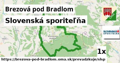 ilustračný obrázok k Slovenská sporiteľňa, Brezová pod Bradlom