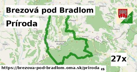 príroda v Brezová pod Bradlom