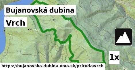 ilustračný obrázok k Vrch, Bujanovská dubina