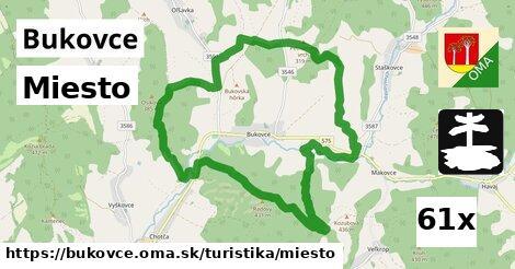 ilustračný obrázok k Miesto, Bukovce