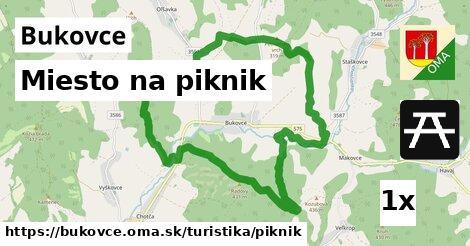 ilustračný obrázok k Miesto na piknik, Bukovce