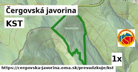 ilustračný obrázok k KST, Čergovská javorina
