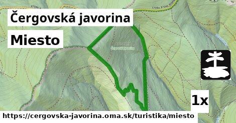 ilustračný obrázok k Miesto, Čergovská javorina