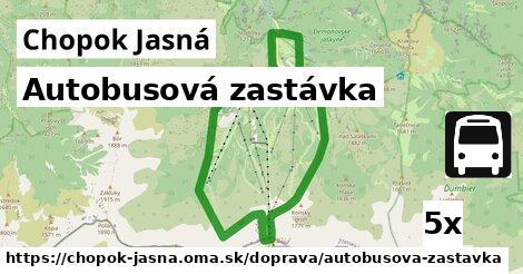 ilustračný obrázok k Autobusová zastávka, Chopok Jasná