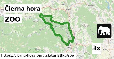 ilustračný obrázok k ZOO, Čierna hora