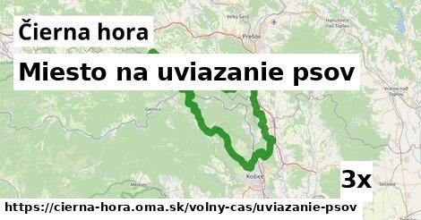 ilustračný obrázok k Miesto na uviazanie psov, Čierna hora