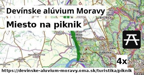 ilustračný obrázok k Miesto na piknik, Devínske alúvium Moravy