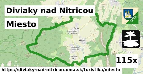 ilustračný obrázok k Miesto, Diviaky nad Nitricou
