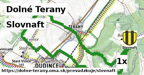 Slovnaft v Dolné Terany