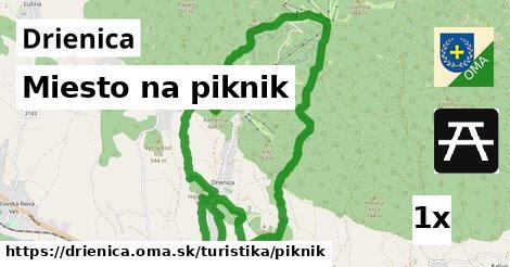 ilustračný obrázok k Miesto na piknik, Drienica