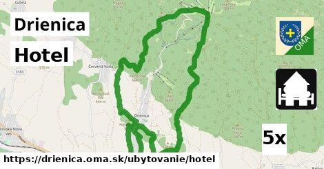 ilustračný obrázok k Hotel, Drienica