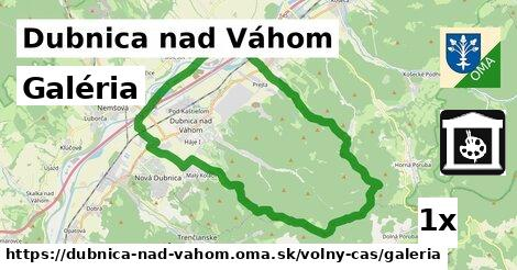 Galéria, Dubnica nad Váhom