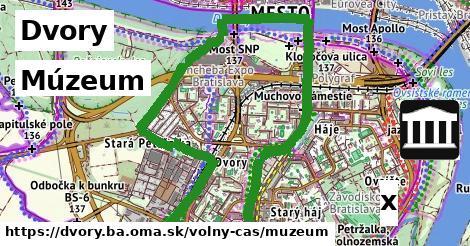 múzeum v Dvory