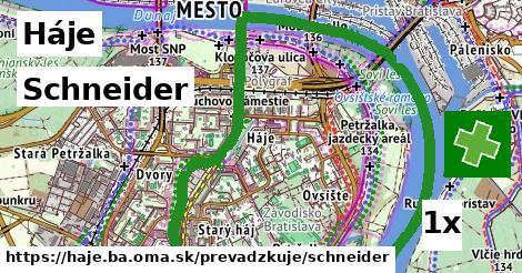 Schneider v Háje