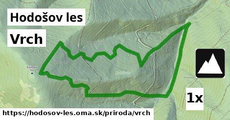 ilustračný obrázok k Vrch, Hodošov les