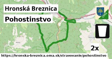 pohostinstvo v Hronská Breznica