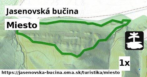 ilustračný obrázok k Miesto, Jasenovská bučina