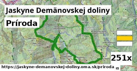 príroda v Jaskyne Demänovskej doliny