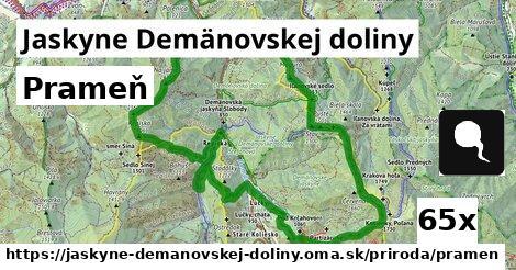 prameň v Jaskyne Demänovskej doliny