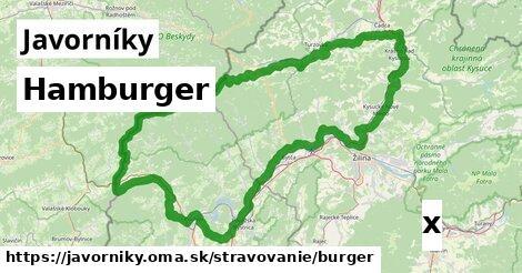 ilustračný obrázok k Hamburger, Javorníky