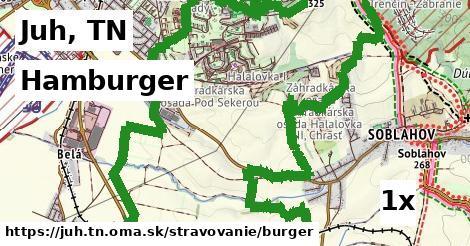 ilustračný obrázok k Hamburger, Juh, TN