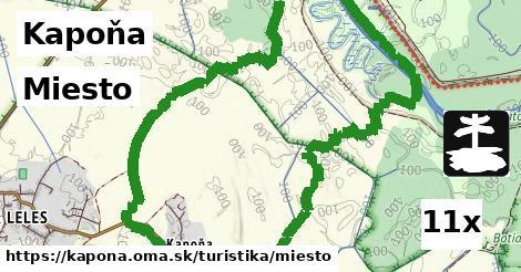 ilustračný obrázok k Miesto, Kapoňa