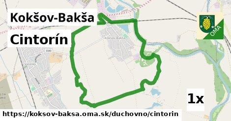 ilustračný obrázok k Cintorín, Kokšov-Bakša