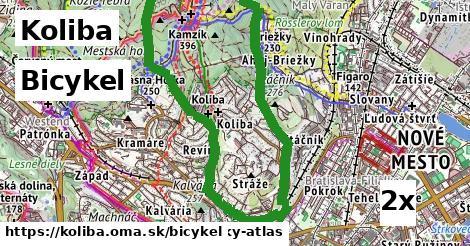 bicykel v Koliba