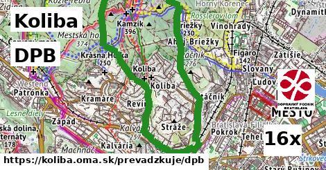 DPB v Koliba