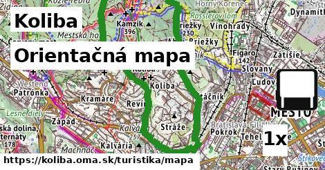 orientačná mapa v Koliba