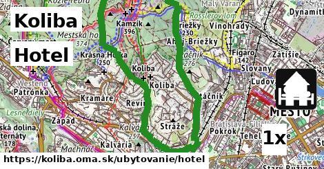 hotel v Koliba