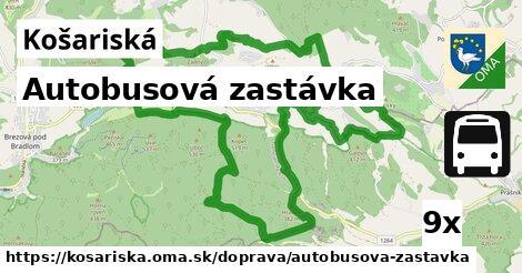 ilustračný obrázok k Autobusová zastávka, Košariská